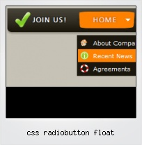 Css Radiobutton Float