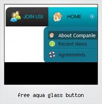 Free Aqua Glass Button